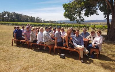 A great Social Event Wine Tour